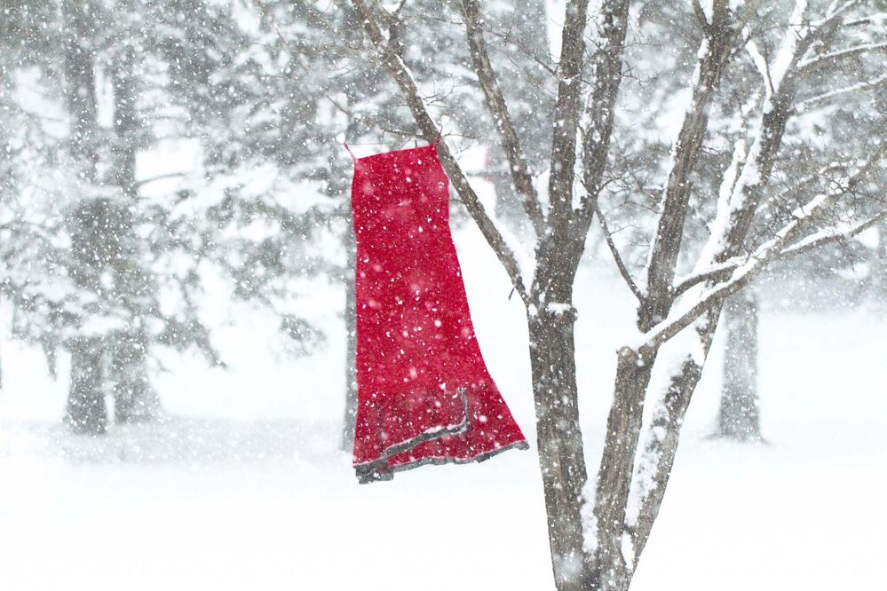 Ode to The REDress Project, 2015<br>Nancy McMillan, Winnipeg<br>Artist Jaime Black's installation, The REDress Project, focuses on the more than 1,000 missing and murdered indigenous women in Canada. Red dresses were installed in public spaces to highlight this national issue, like this one outside a Winnipeg school.<br>