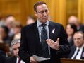 'I'm in': Peter MacKay confirms he's seeking Conservative leadership
