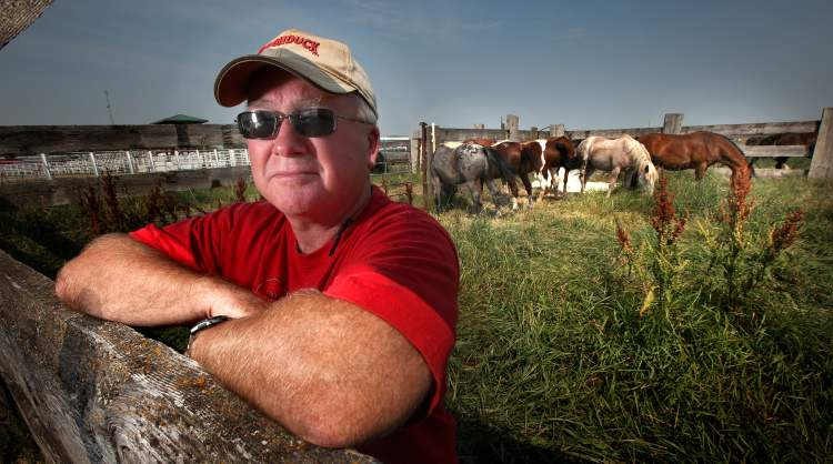 Phil Hossack / Winnipeg Free Press Manitoba Stampede president Tim Lewis says there hasn't been an animal fatality at the Manitoba event in recent memory.