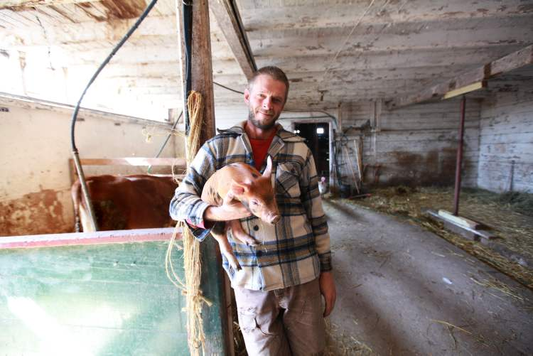Terry Mierau operates one of the town's housebarns and keeps livestock in it.