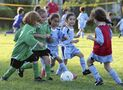 Competitive kids' sports: good or bad?
