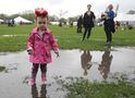 It seems getting wet's a tradition at the Teddy Bears Picnic