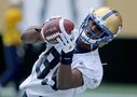 Bomber slotback Denmark wins CFL all-star honours