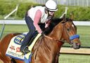 Hoppertunity, 2nd favourite in Kentucky Derby, out of race with sore front foot