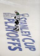Dallas Stars' Ryan Garbutt skates on the ice before the start of Game 1 of the first-round NHL hockey Stanley Cup playoff series against the Anaheim Ducks on Wednesday, April 16, 2014, in Anaheim, Calif. (AP Photo/Jae C. Hong)