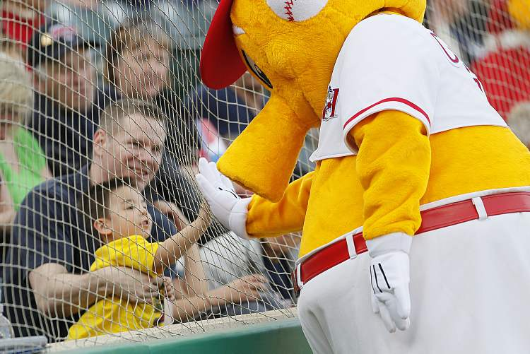 Gavin, 2, and Rob Chester high-five Goldie. (John Woods / Winnipeg Free Press)