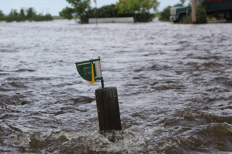 There's little humour to be found in a rain gauge in a yard covered in flood water. (Tim Smith / Brandon Sun)