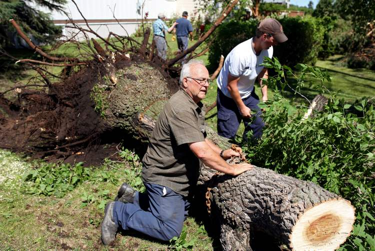 Mel Edwards (left) helps neighbours remove fallen trees from their property in Pipestone on Sunday after a powerful storm heavily damaged the community Saturday evening.