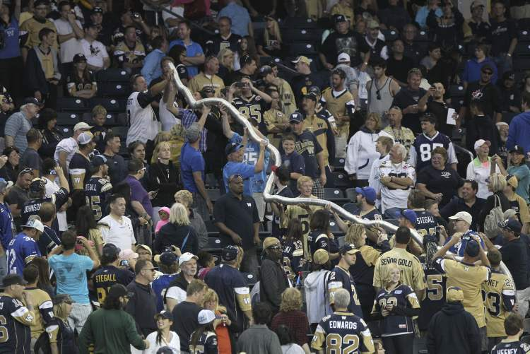 Rob Ford wasn't the only notable guest at the Bomber game — fans also brought back the cup snake. (MIKE DEAL / WINNIPEG FREE PRESS)