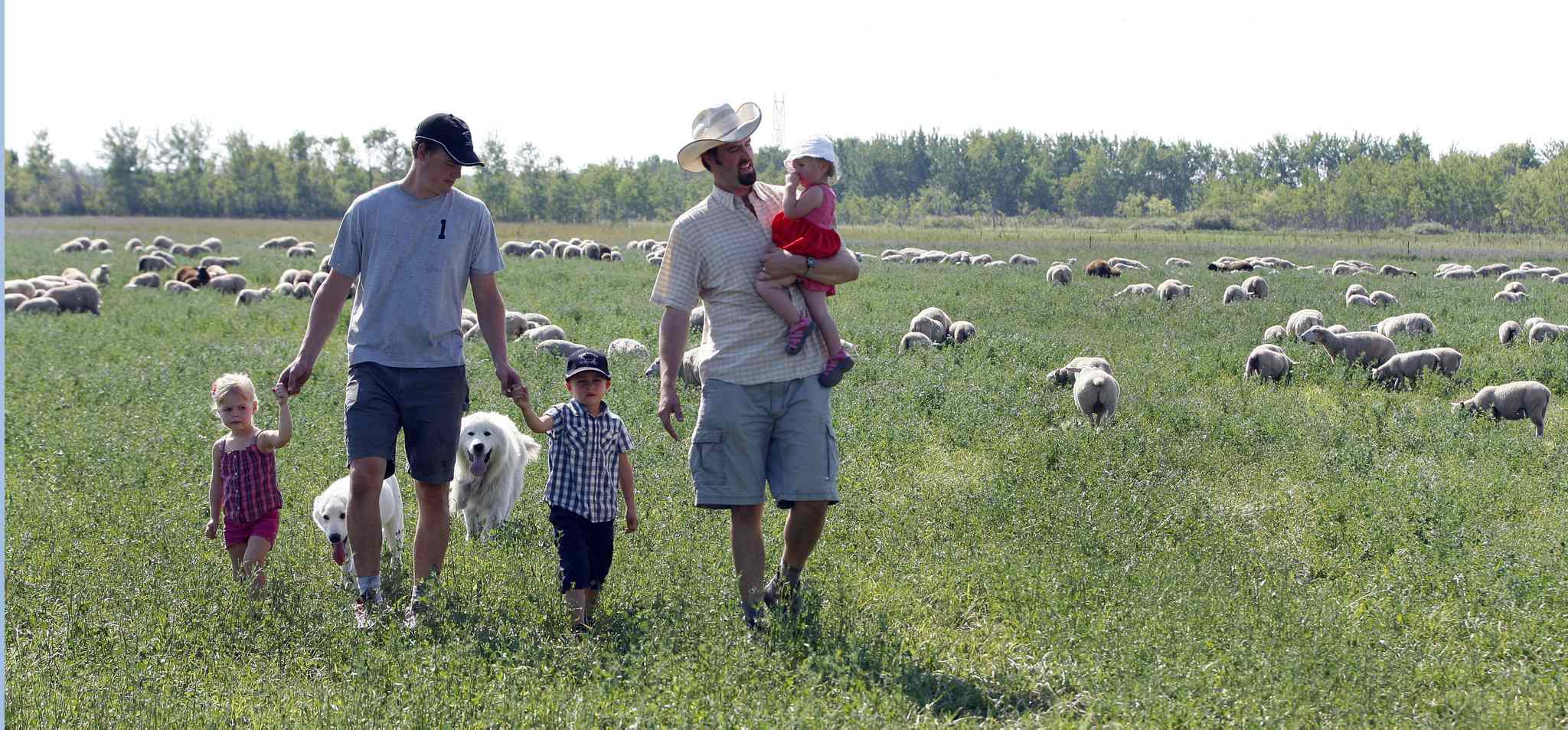 Stefan Bouw (left) with Mikaya, 2, and Jaxon, 4, and Jonathan Bouw with Lucille, 19 months, inspect pasture where they also raise grass-fed sheep.