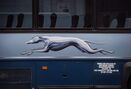 Trudeau asks transport minister to tackle Greyhound's western pullout