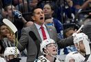 Bob the Builder: Panthers' coach putting his stamp on things