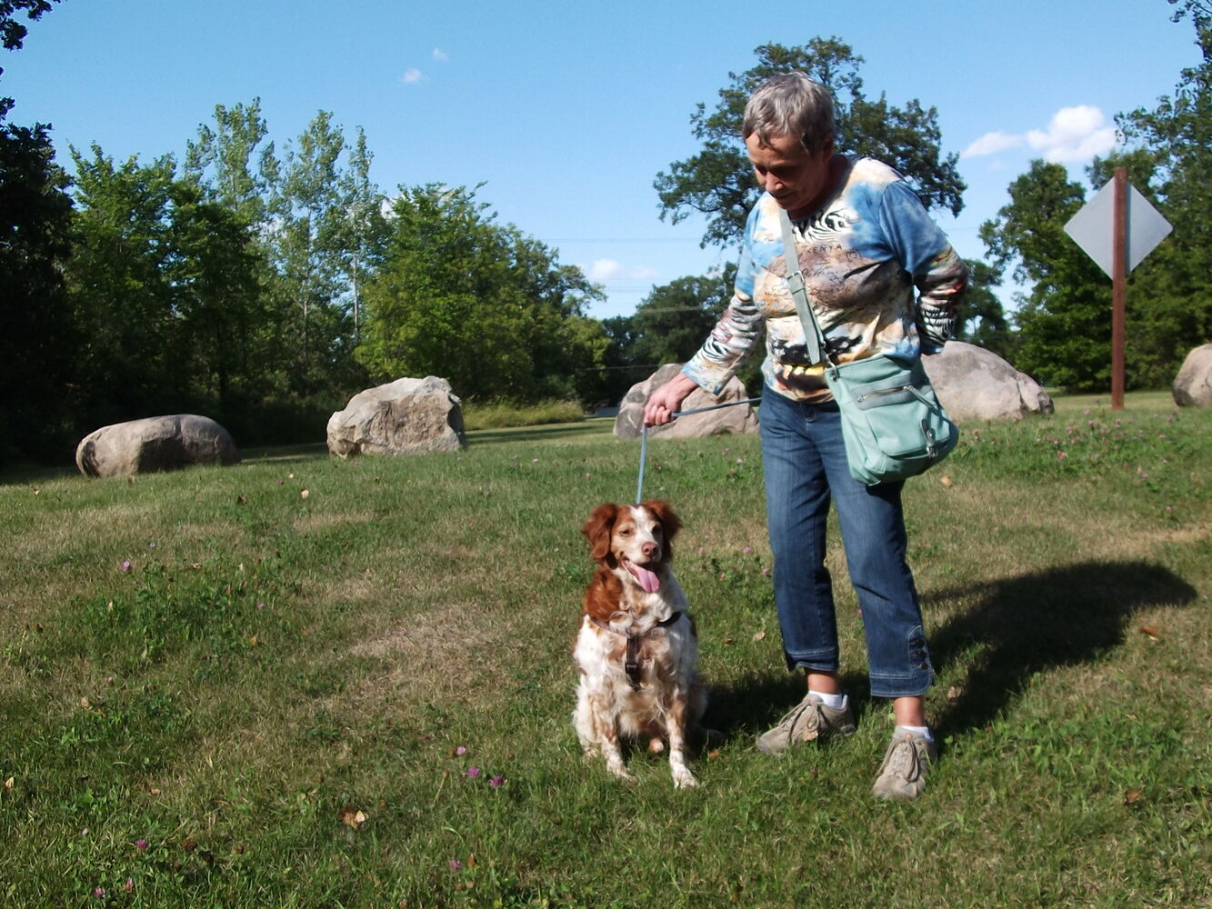 This is Rollo, a nine-year-old Brittany Spaniel. He is owned by Tom and Sherry Ramsay who brought Rollo home from the humane society two and a half years ago. That's Sherry walking Rollo which they do six or seven times a day across their acreage near Selkirk. Still, they are worried about Rollo's weight. Currently, that sits at just over 59 lbs. They would like Rollo to drop about 10 lbs. and hit a healthy 49 lbs. They've tried various diets, had some vet advice and met with some success. But Rollo is like the rest of us: he loses a bit, but then promptly rebounds.