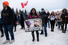 Premier vows more tickets for protesters at anti-mask rally