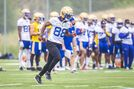 Uh-oh CFL, here comes the Blue Bombers offence