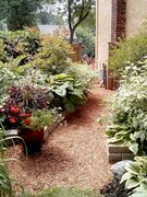 Shredded redwood mulch available in large bales transforms bare soil into an attractive area.