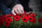 Spiritual leaders call for respect, unity during Remembrance Day ceremony