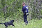 Field by field, searchers near Arborg seek clues to missing man