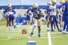 Kongbo glad to be back in Blue and Gold