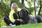 Athletes offered tail-wagging, slobbery therapy