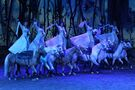 Cavalia bringing Odysseo back for a second run in May