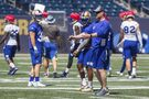 Bombers prepare for Lions to bare fangs