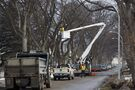 City looks to residents, community groups to make up for shortfall of new trees