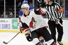 Varlamov makes 21 saves, Islanders beat Coyotes 4-2