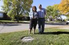 Tree replacement wait times questioned amid city planting push