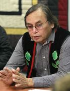 Southern Grand Chief Terry Nelson