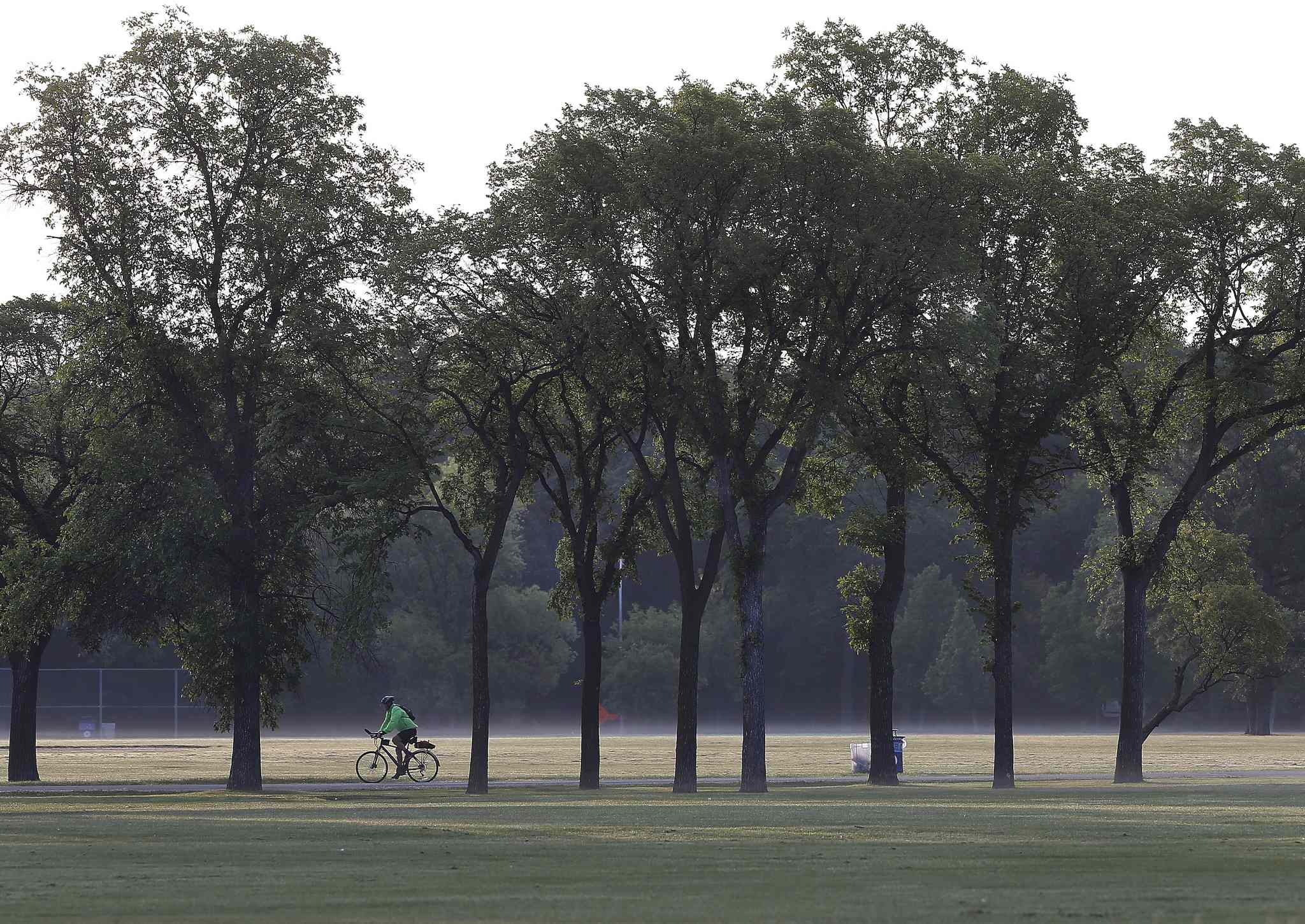 A cyclist rides through Assiniboine Park sunrise  Wednesday morning as mist rises from the park lawns.