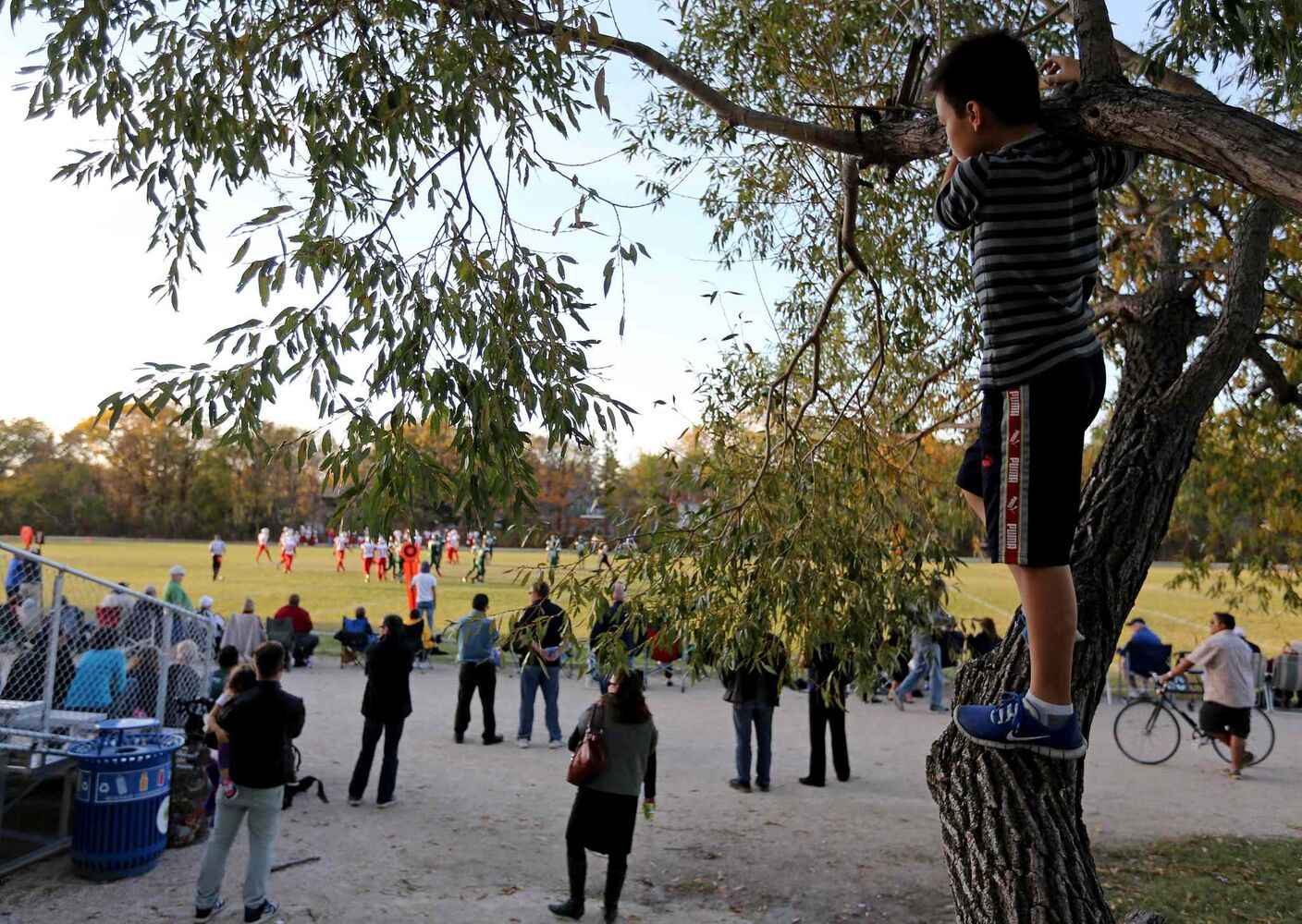 Oliver, 11, watches from a tree as his brother, who plays for the Kelvin Clippers, takes to the field. (TREVOR HAGAN / WINNIPEG FREE PRESS)