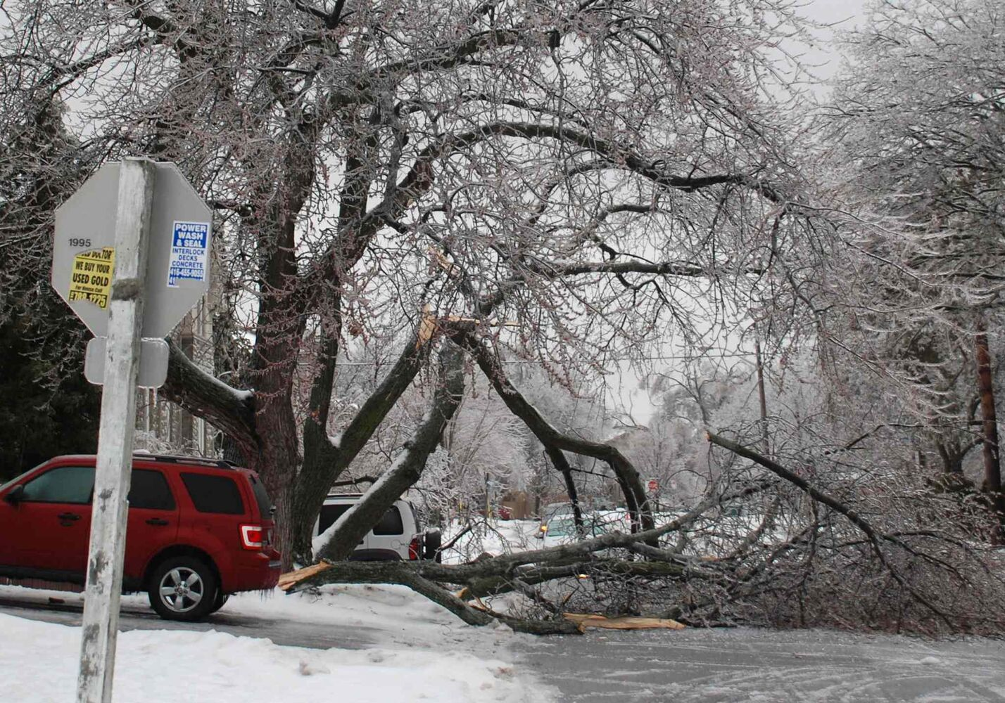 Ice-covered tree limbs block a road in northern Toronto Sunday.