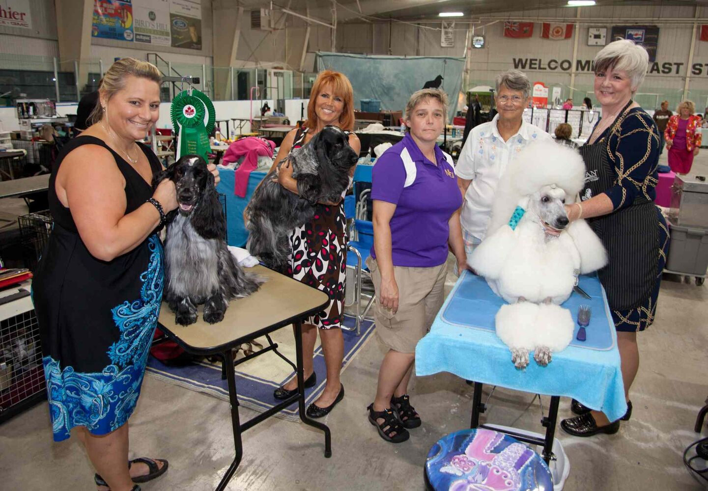 The 40th annual Manitoba Canine Association (MCA) show runs Aug. 13 to Aug. 16 at the East St. Paul Community Centre. This year's show is a memorial for David Markus, one of the founders of the MCA. The show features dogs of all breeds from across North America and overseas. Some of the proceeds from this year's event will go toward buying a vest for a local police dog. Pictured, from left, are Tracy Comberbach with Jagger, Maureen Hepples with Joey, Jill Fraser (MCA president), Harriett Lee (an event judge from Virginia) and Leanne MacIver with MacBeth, on Aug. 14, 2015. (JOHN JOHNSTON / WINNIPEG FREE PRESS)