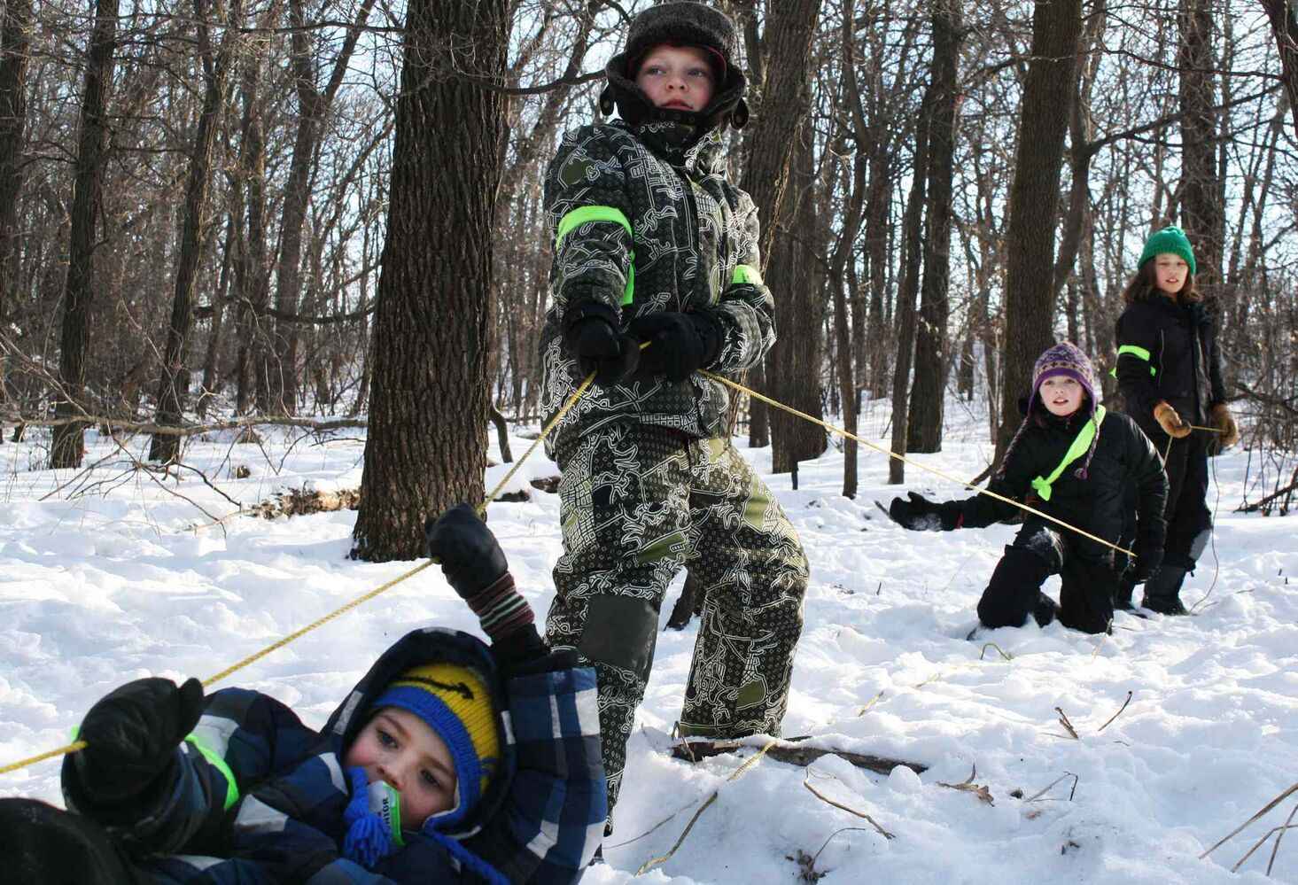 A group of Cub Scouts, who call themselves 'Team People', pull their sled across the ropes course at the 45th Klondike Derby in La Salle, Manitoba on Sunday. (Jessica Botelho-Urbanski / Winnipeg Free Press)