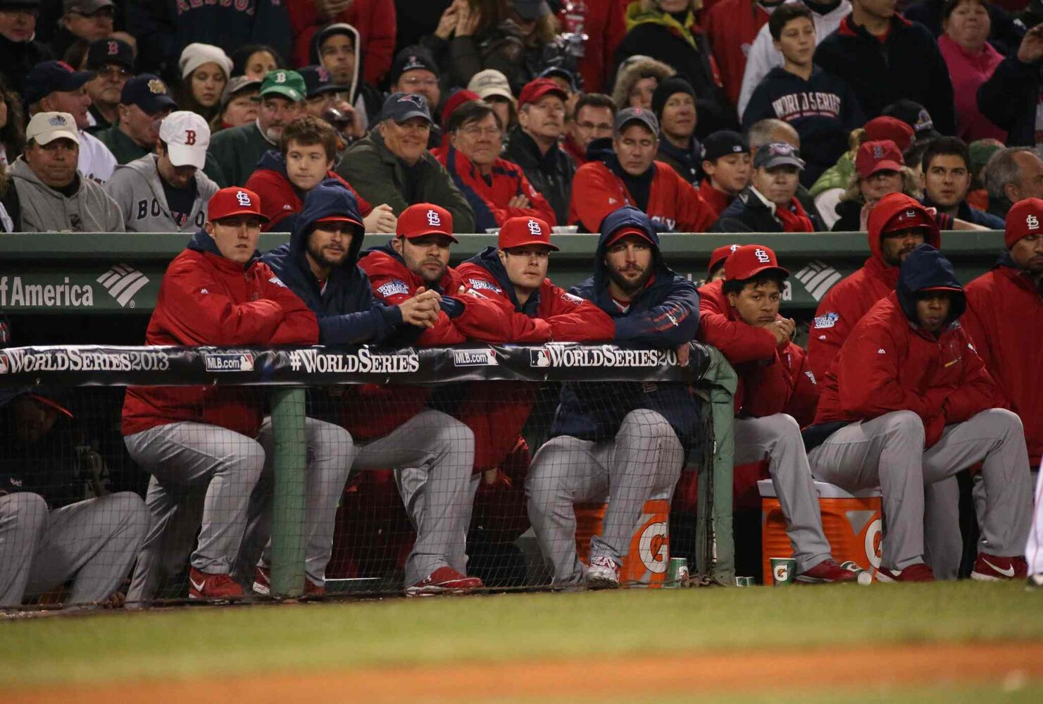 The St. Louis Cardinals watch from the dugout in the eighth inning