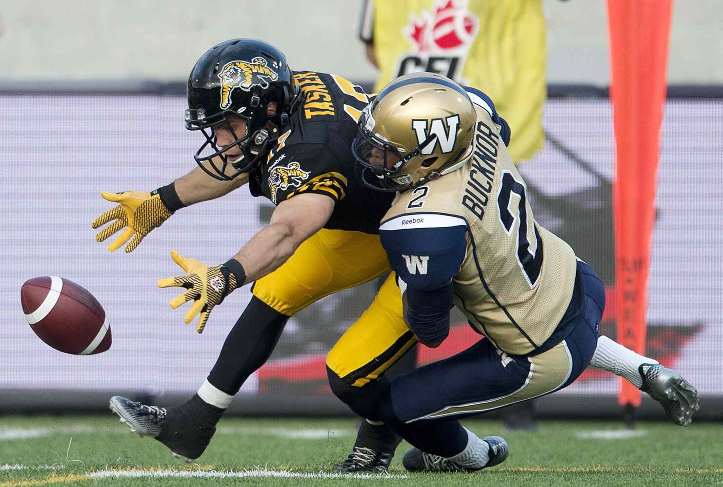 Hamilton Tiger-Cats' receiver Luke Tasker, left, loses the ball but recovers it past Winnipeg Blue Bombers' defensive back Matt Bucknor, right, during the first half of Thursday's game.  (Nathan Denette / The Canadian Press)