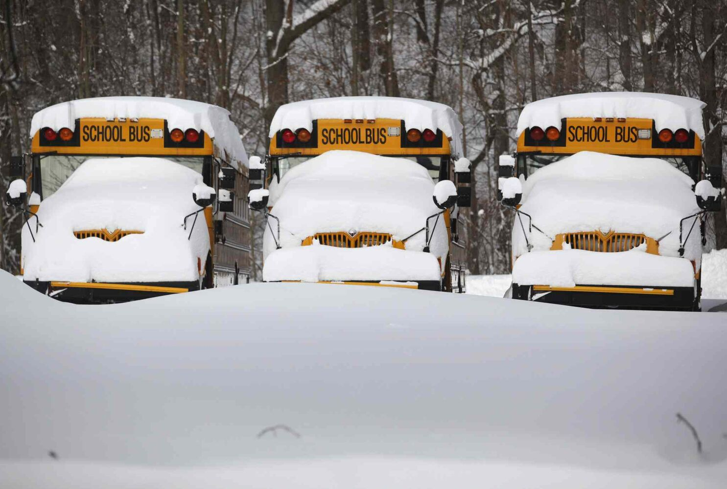 School buses parked at the Howard Street KPS administration building are covered in snow Tuesday in Kalamazoo, Mich. The region experienced freezing temperatures Tuesday.  (Mark Bugnaski / The Associated Press)