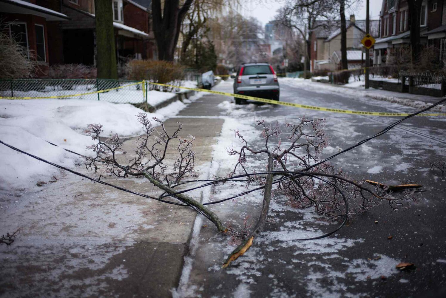 A downed power line is tangled up with a fallen branch near Toronto's Trinity Bellwoods Park Sunday. (Ian Willms / The Canadian Press)