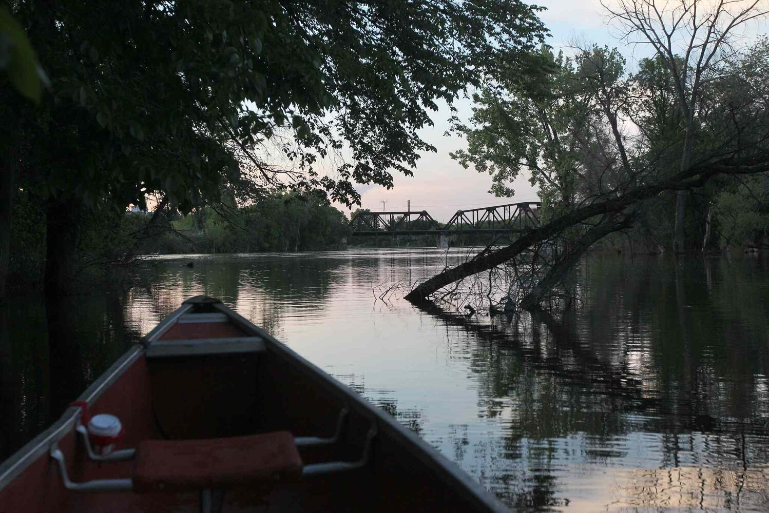 Canoeing down the Seine River (Ruth Bonneville / Winnipeg Free Press)
