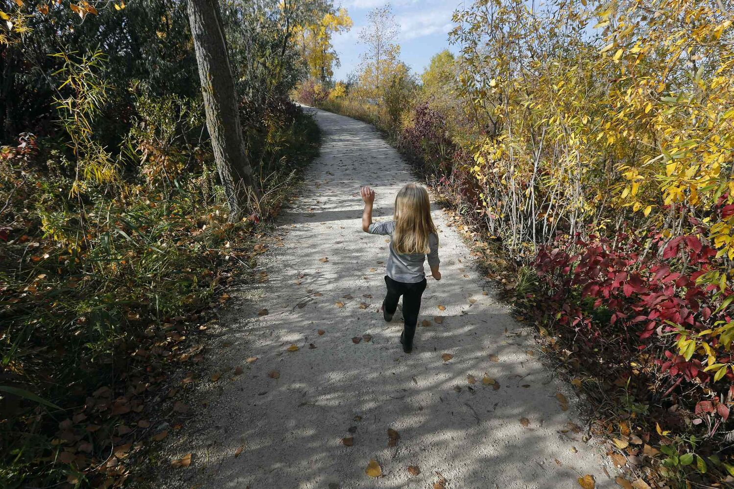 Paths and boardwalks at FortWhyte Alive give the public pathways to connect with nature. (KEN GIGLIOTTI / WINNIPEG FREE PRESS)