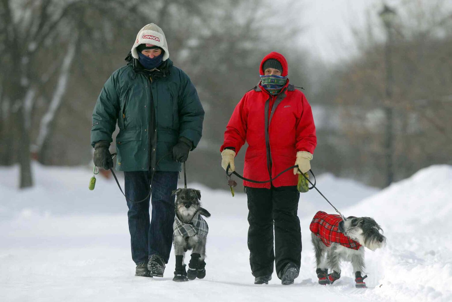 Greg Arason and his wife Margaret walk their dogs Eli and Quito(in red) in Southdale Monday. The cold temperatures didn't stop the couple from getting some exercise. (BORIS MINKEVICH / WINNIPEG FREE PRESS)