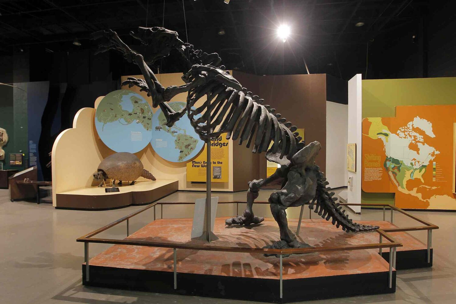 The Manitoba Museum. This part of the museum shows the richness of the prehistoric animals that once inhabited the prairies. BORIS MINKEVICH/WINNIPEG FREE PRESS