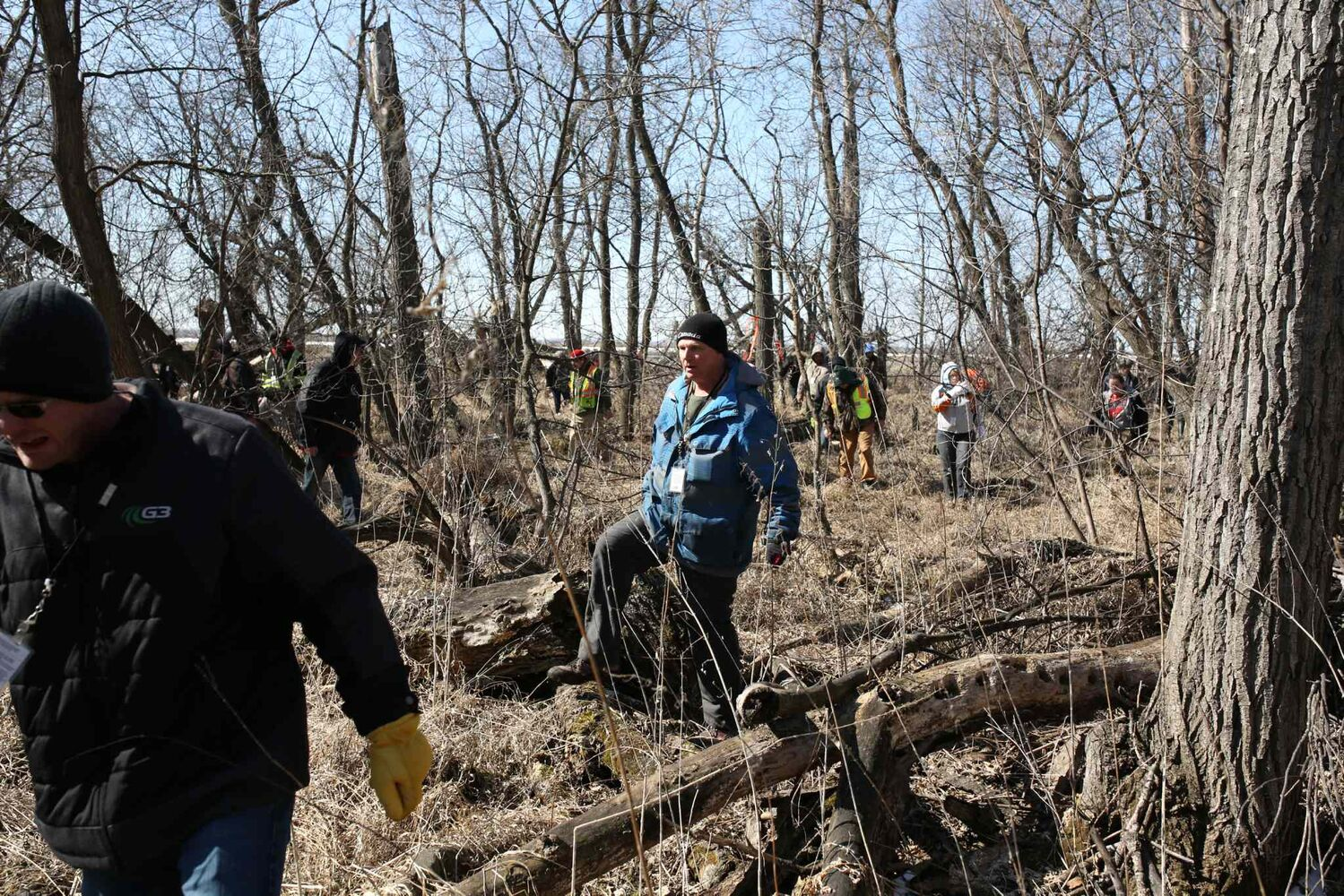 Volunteers fan out and search for two-year-old Chase Martens in a stand of trees surrounded by farm land near his home north of Austin, Manitoba on Wednesday. (Tim Smith/Brandon Sun)