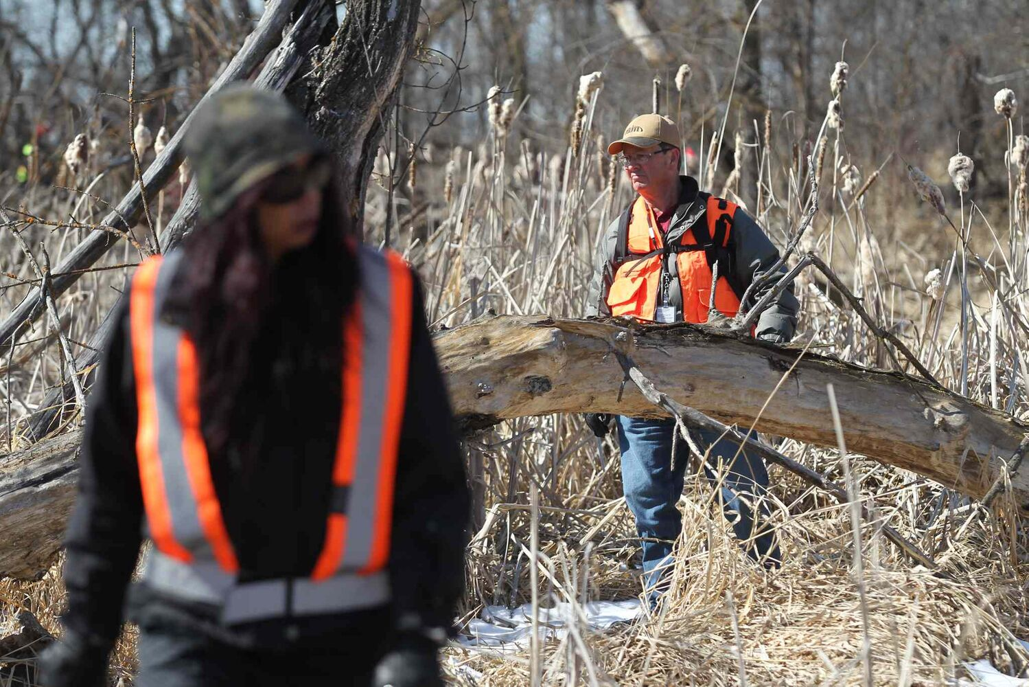 Volunteers comb through a stand of trees in a field looking for two-year-old Chase Martens near his family's home. (Tim Smith/Brandon Sun)