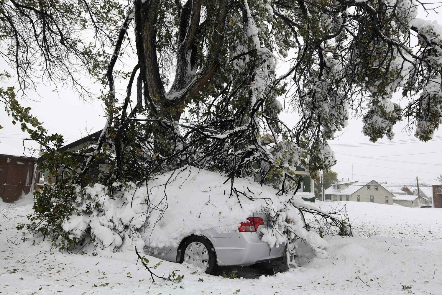 Broken tree branches cover a vehicle Saturday in Rapid City, S.D.  (Benjamin Brayfield / The ASsociated Press)