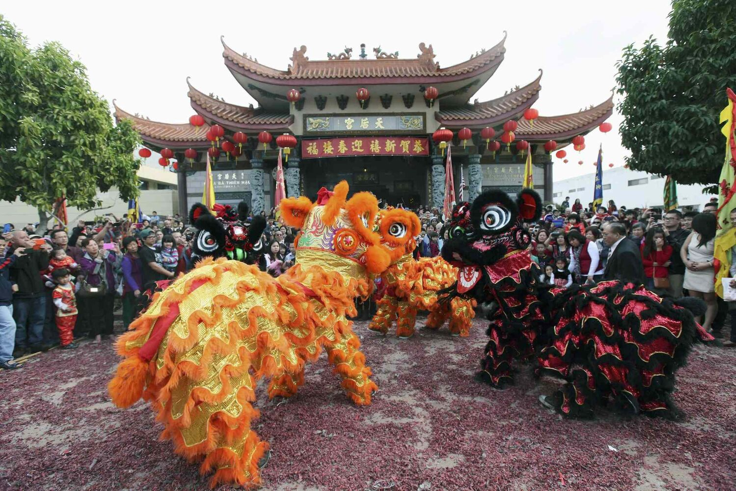 People watch a dragon dance at the Thien Hau temple in Los Angeles, on Friday, Jan. 31, 2014.  (Nick Ut / The Associated Press)