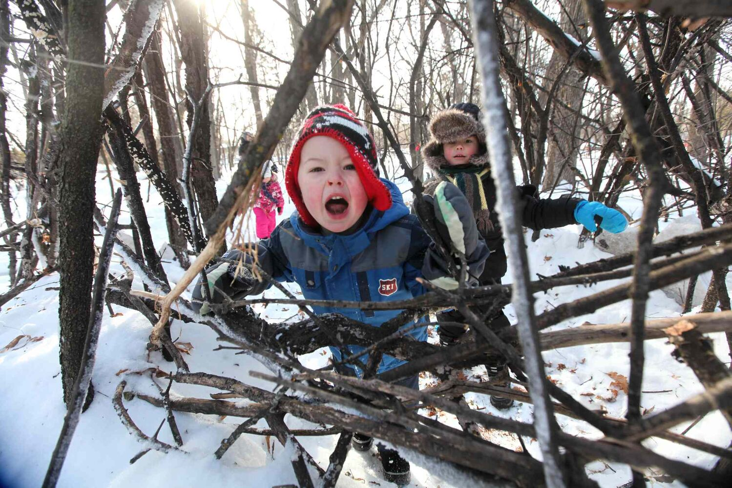 Owen Edmonds, 5, growls as he pretends to be a bear while playing with Jessie Reid, 5, and his sister, Alice Edmonds, 3, in a pretend cage made of sticks in the woods at Assiniboine Park Saturday morning. The structures were made by children and childcare workers in an early childhood education program as part of a initiative to get kids playing outside creating things with nature.