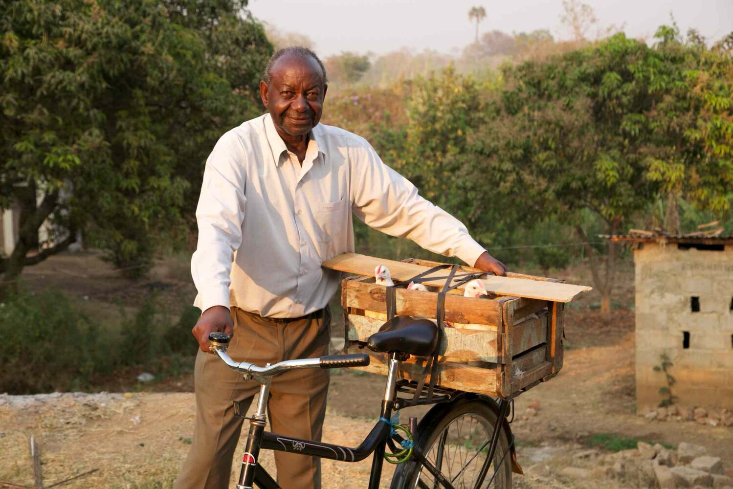 George is a chicken farmer in Zambia.