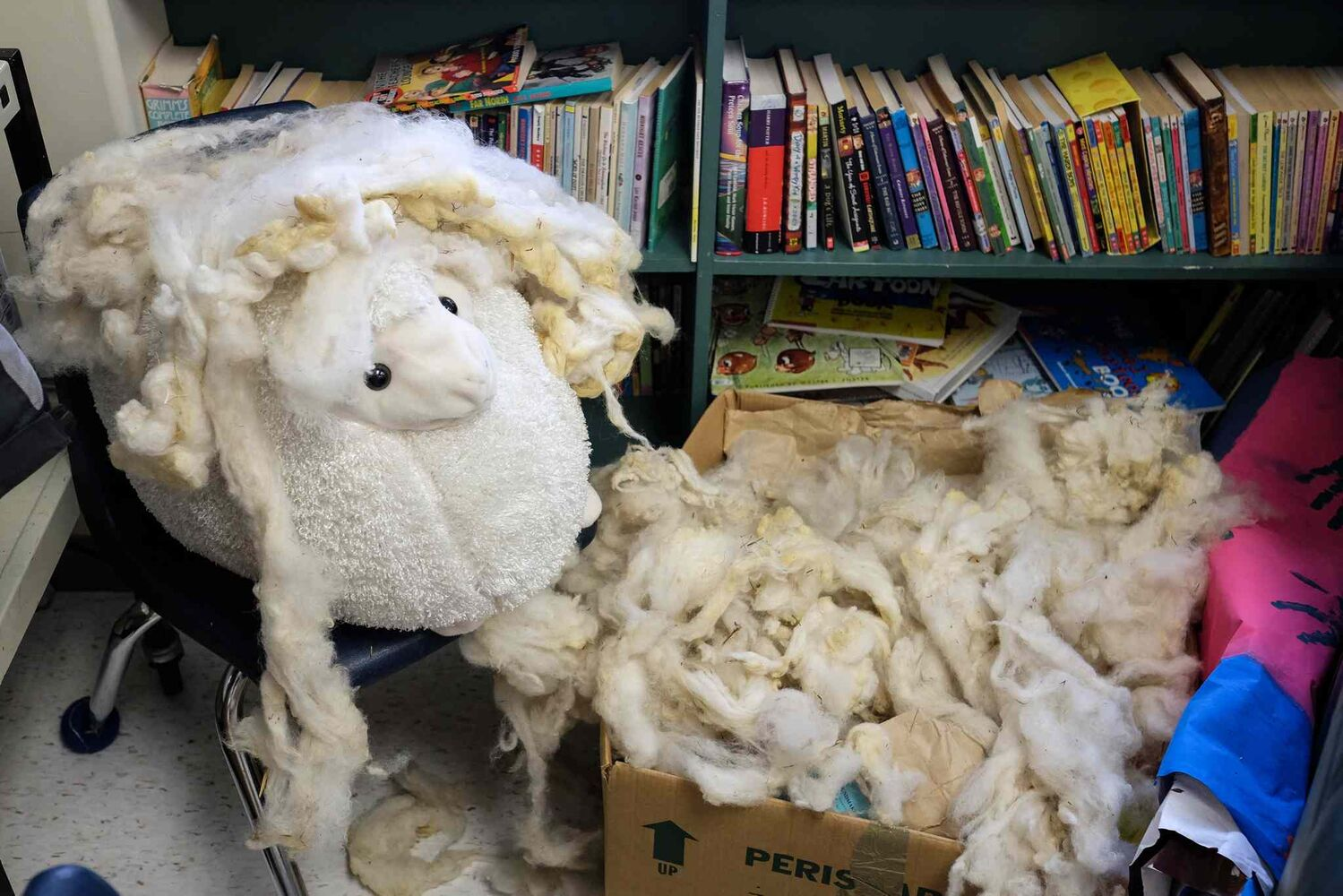 The class mascot, Shaun, sits in a corner with a box full of wool that has been washed, but still needs to be picked and carded before being spun into yarn.  (MIKE DEAL / WINNIPEG FREE PRESS)